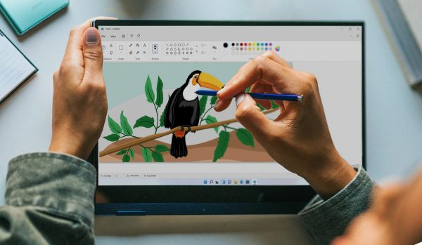 Paint for Windows 11